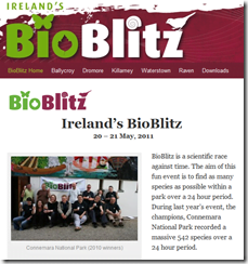 BioBlitz brings volunteers and experts together to catalogue Irish biodiversity