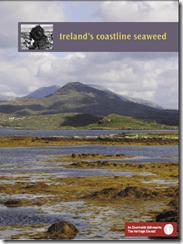 Ireland now home to 90% of European breeding population of the Roseate Tern (Sterna dougallii)