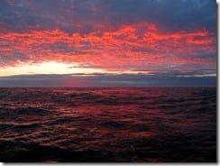 Oceans under threat: marine experts predict mass extinction