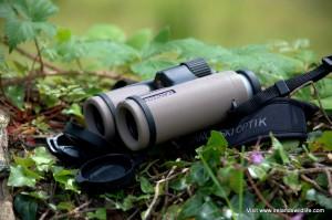 The Swarovski CL Companion 10x30 binocular in Sand / Brown