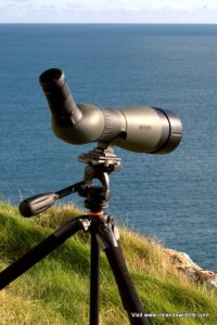 Optics for whale watching