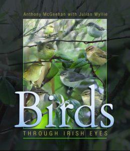 Birds through Irish Eyes