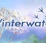 BBC Winterwatch