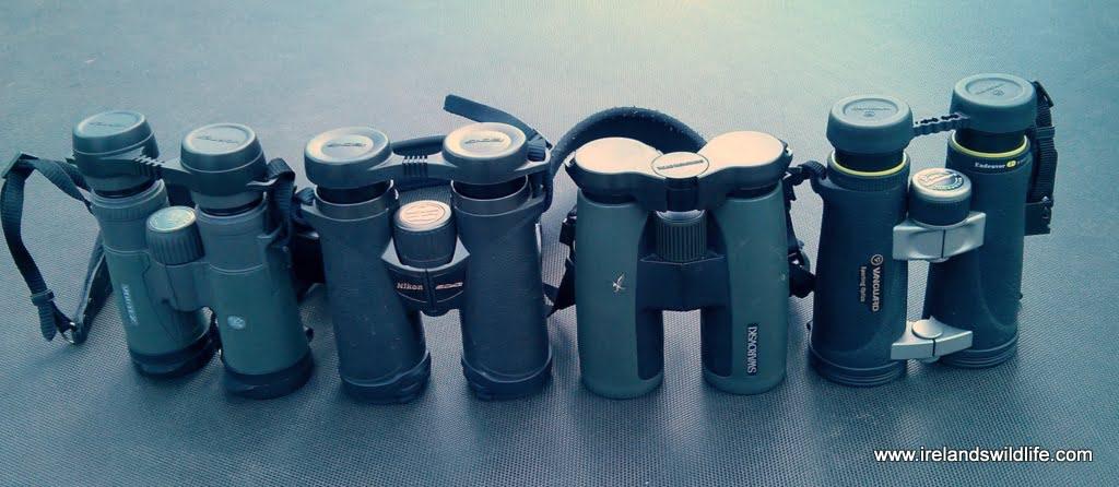 Nikon EDG size comparison
