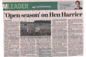 Open season on Hen Harrier in the Limerick leader