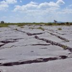 Limestone Pavement, The Burren, Co. Clare