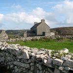 Cape Clear in Co. Cork is one of David Lindo's favourite Irish birding hotspots