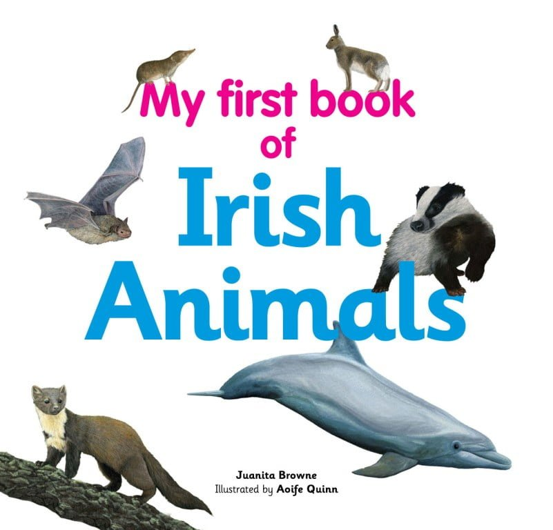 New book project to help Irish children engage with ...