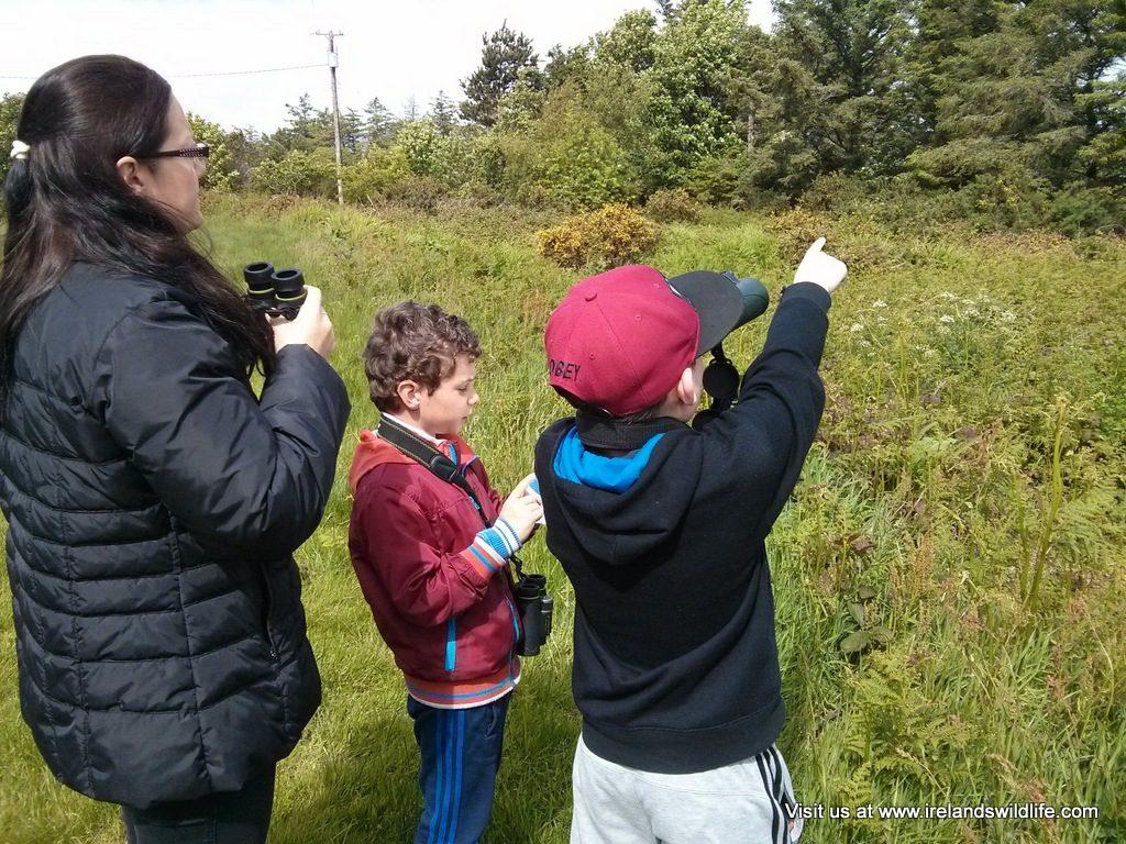 Wildlife watching with schools