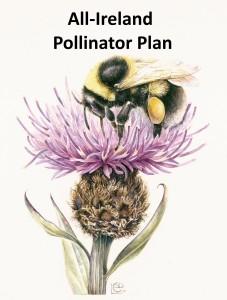 All Ireland Pollinator Plan