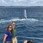 Photobombing Humpback