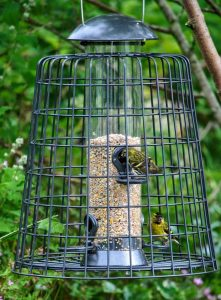High quality bird feeders make great Christmas presents