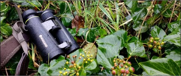Win an Endeavor EDIV Binocular