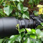 Tamron SP 150-600mm G2