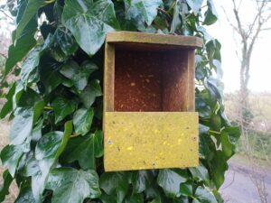 Open-fronted nest boxes suit garden birds like robins and wrens.